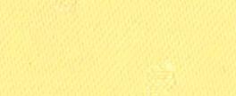 No.41 レモン